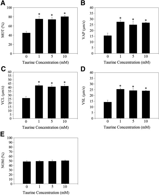 effect of alcohol on human sperm in vitro Six different doses of caffeine were used to study its effect on human spermatozoal motility the recently developed method for assessment of sperm motility by videomicrography was used to determine the percentage of sperm motility, swimming speed (velocity), percentage of progressive sperm, and.